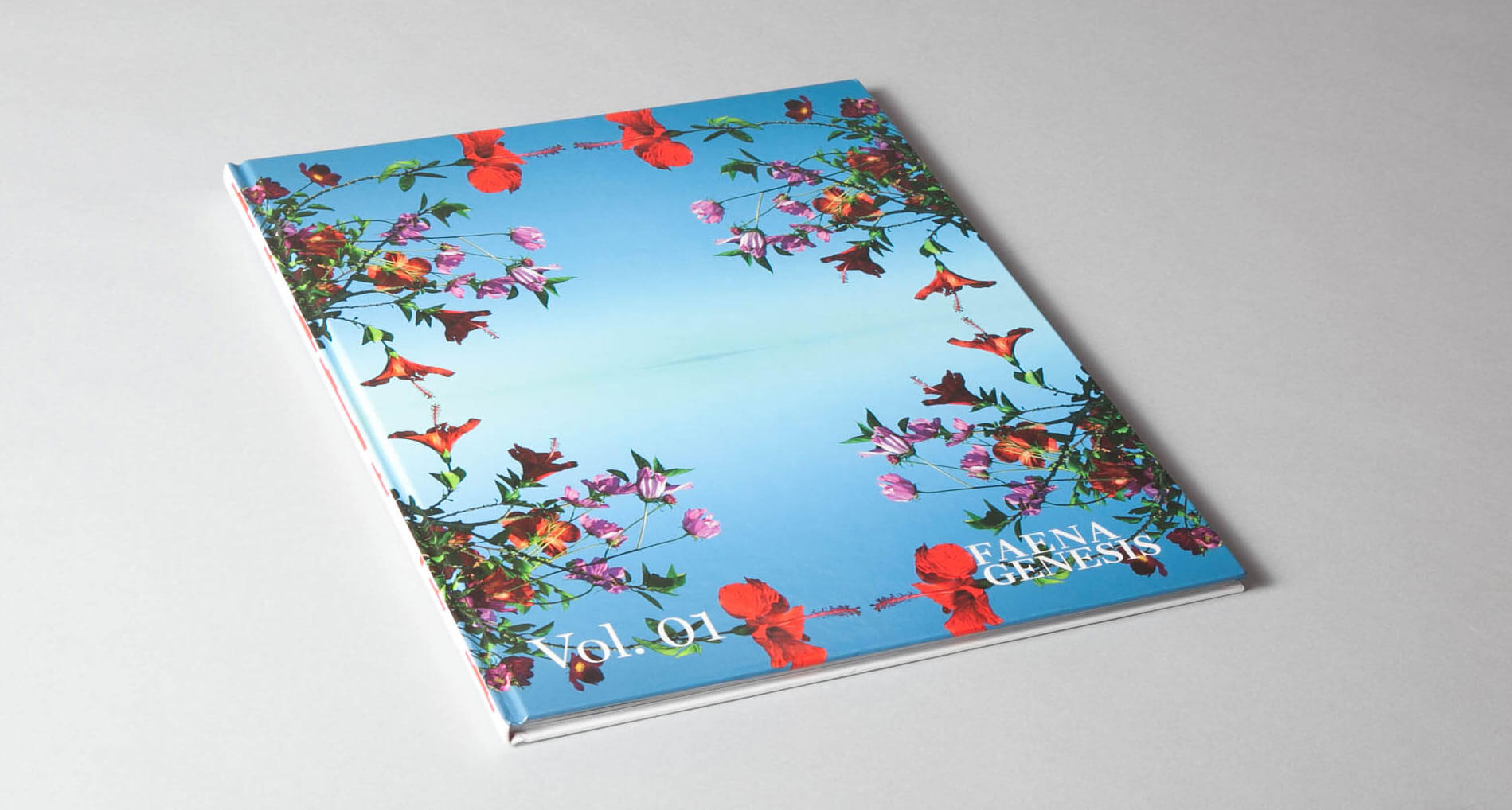 faena-brochure-11