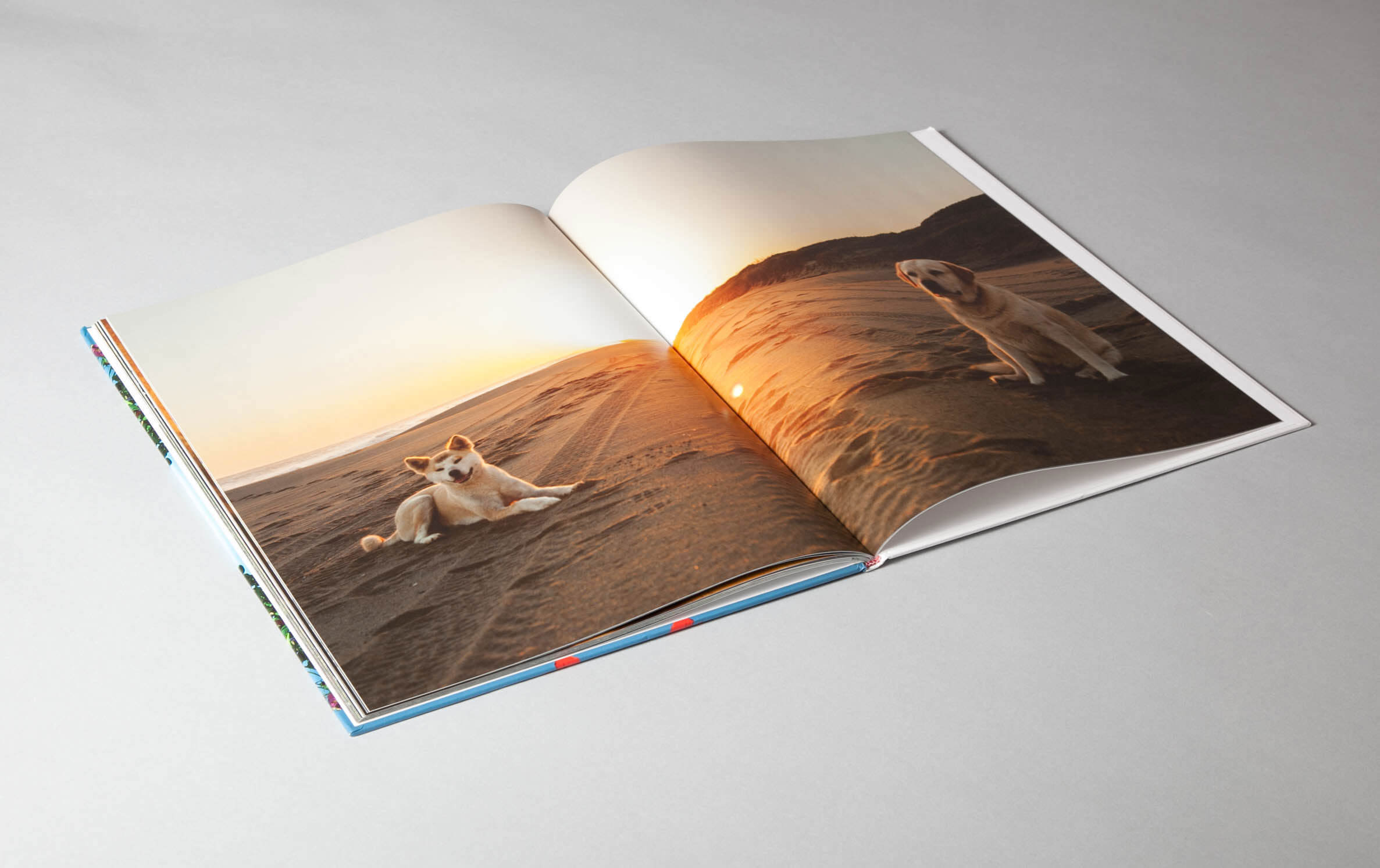 faena-brochure-3