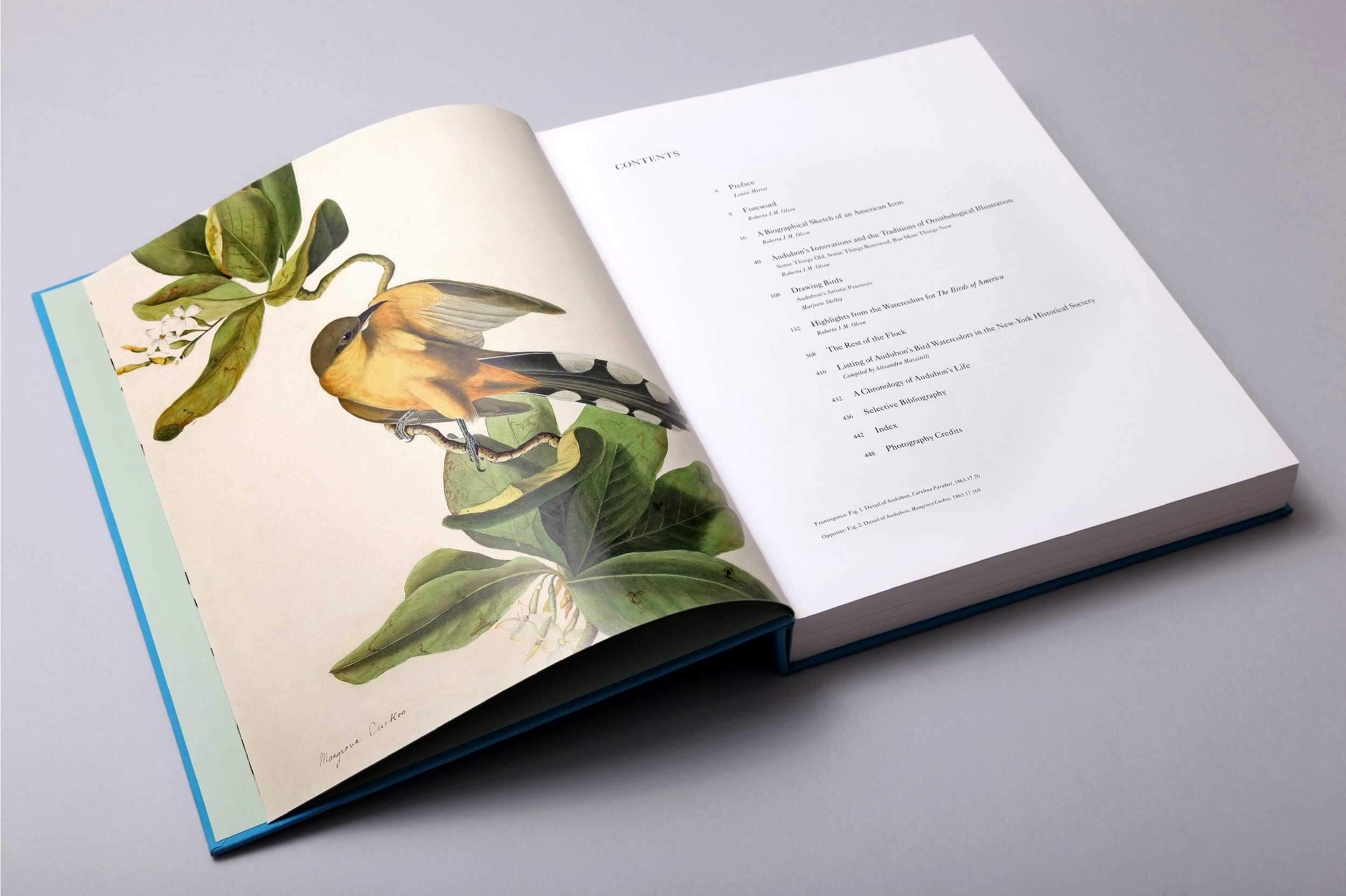 audubons-aviary-2