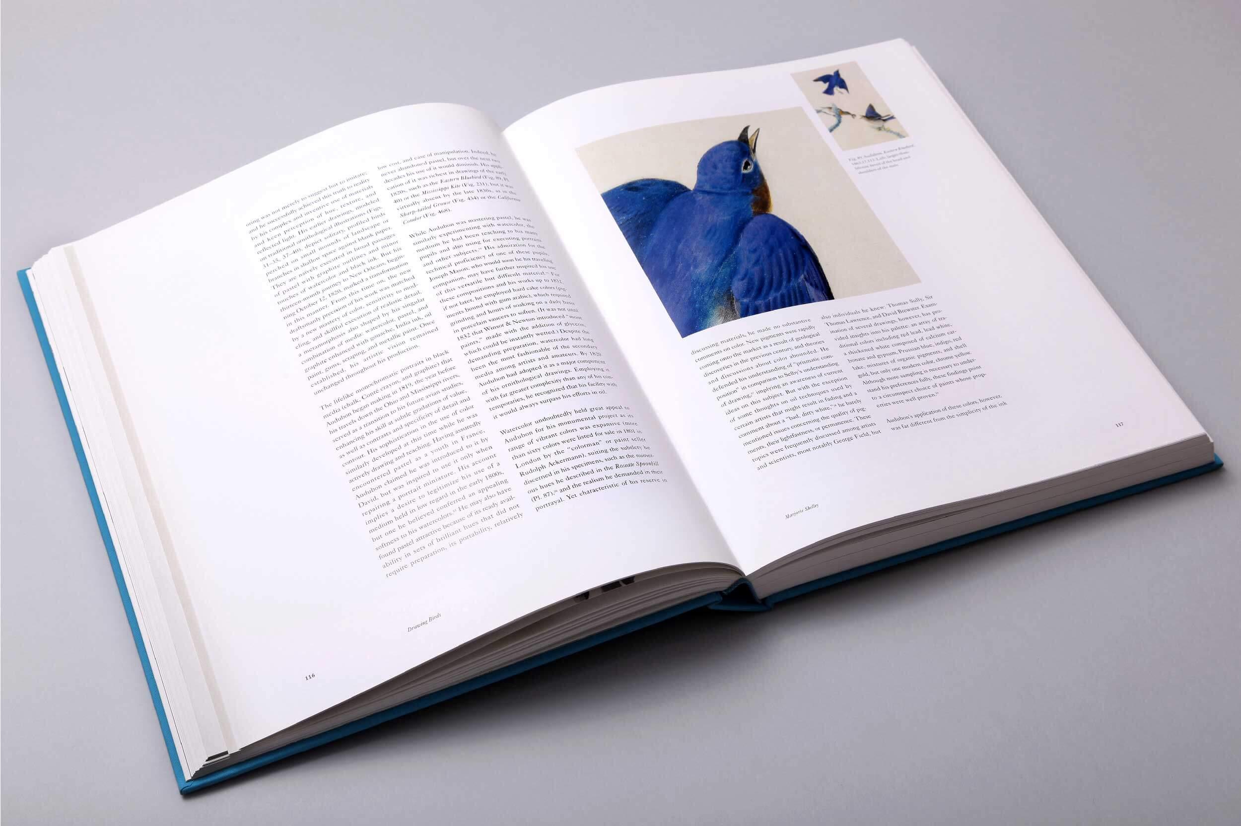 audubons-aviary-5